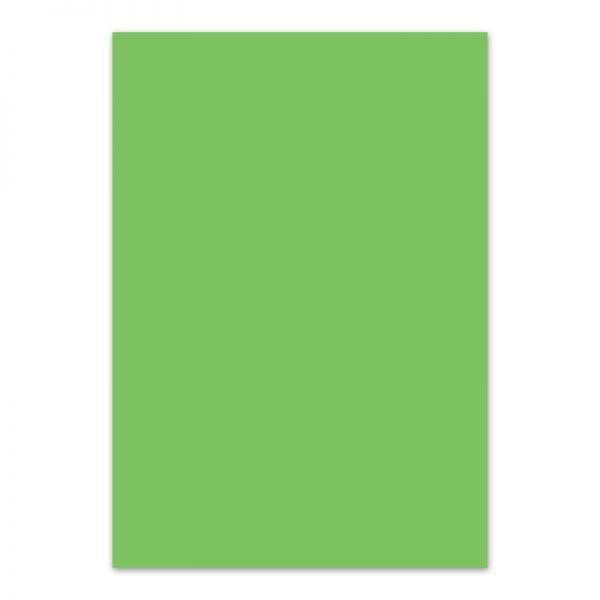 Fotokarton groen